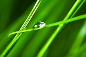 glass-lubrication